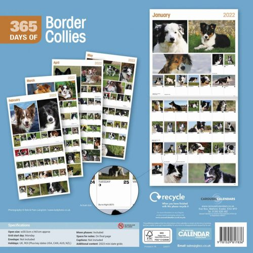 365 Days of Border Collies Calendar 2022-back