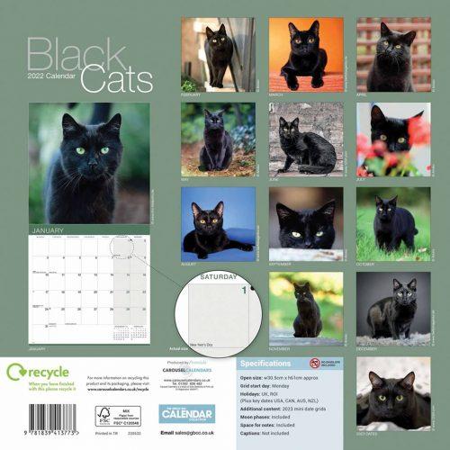 Black Cats Calendar 2022-back