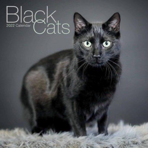 Black Cats Calendar 2022-front