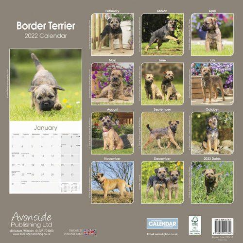 Border Terrier Calendar 2022-back