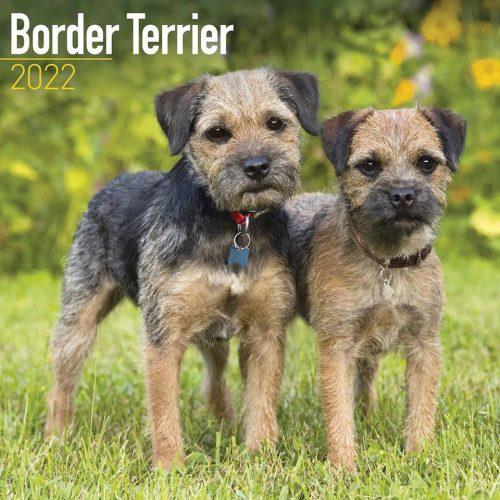 Border Terrier Calendar 2022-front
