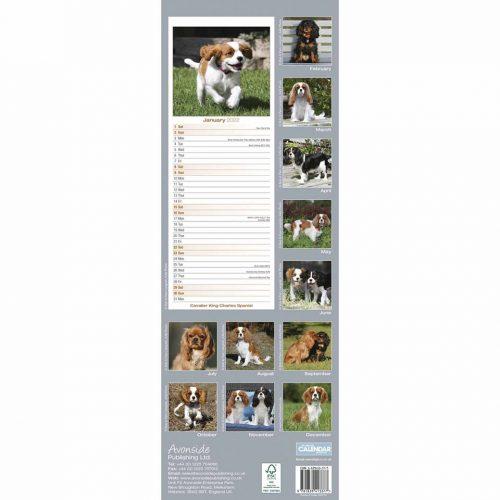 Cavalier King Charles Spaniel Slim Calendar 2022-back