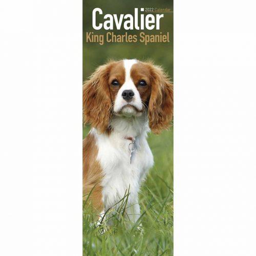 Cavalier King Charles Spaniel Slim Calendar 2022-front