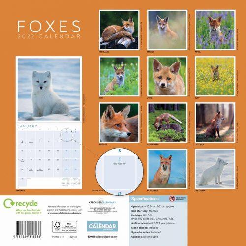 Foxes Calendar 2022-back