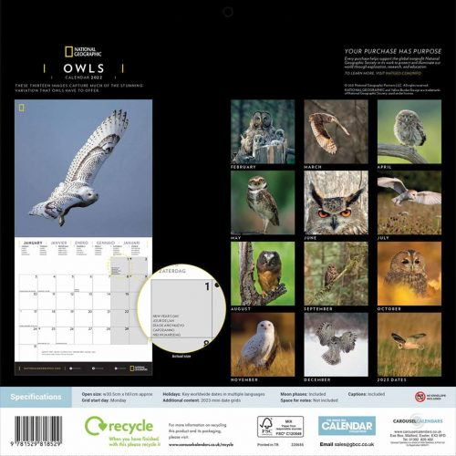 National Geographic Owls Calendar 2022-back